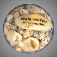 1904 St. Louis World's Fair Sea Shell Glass Paperweight