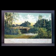1908 Undivided Back Post  Card Rustic Bridge, Washington Park, Chicago