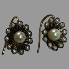 Antique  French Art Nouveau Daisy pearls silver earrings