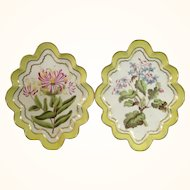 Pair of Derby Yellow Ground Botanical Dessert Dishes by Quaker Pegg c.1796-1801.