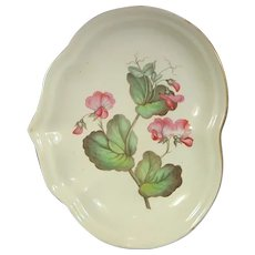 Derby Botanical Dish with Sweet Pea Blossom C.1810.