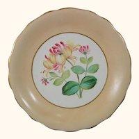 English Victorian Era Botanical Plate with Honeysuckle Flower c.1845.