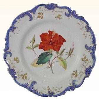 Set of Six Chamberlain Worcester Antique Porcelain Botanical Plates, c.1825