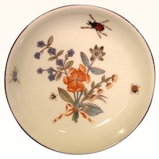 Early Meissen Saucer with Shadowed Insects by Johann Klinger c.1740.