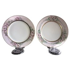 Pair of Antique HandPainted Plates, Haviland Limoges France, Signed by (same) Artist  ca. 1893~1930s