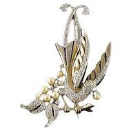 Rare 1940s MB Boucher Gold and Rhinestone Lyrebird Brooch Pin, Book Piece