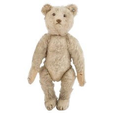 "Antique Steiff Teddy Bear with ff button, 8 ¾ "" Circa 1910"