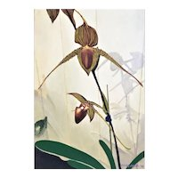 Oil on Canvas, Rare Orchid by James Morgan