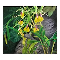 Oil On Canvas Orchid by James Morgan(1919-2019)