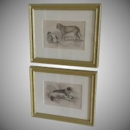 19th Century Hand Colored Engravings of Dogs, pair.