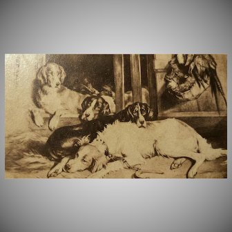 "Antique "" Carte de Visite "" Dogs,  Cabinet Card"