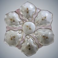 19th Century  Oyster Plate
