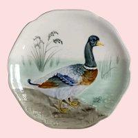 Choisy Le Roi,  Mallard Duck, Majolica Plate