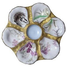 Elegant,  19th Century,  Sea Life,  Oyster Plate