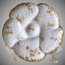 19th Century, Oyster Plate,  CFH / GDM, Limoges, France