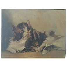 19th Century,  Kitten's,  Original Oil Painting