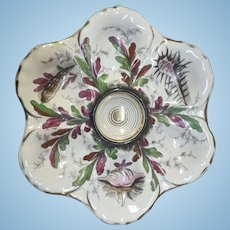 19th Century Oyster Plate, Gorgeous, Shell & Sea Life Design