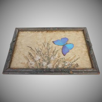 19th Century , Butterfly, Vanity Tray