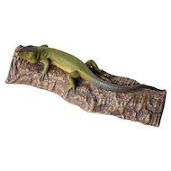 "Antique Lizard on Branch, 11.8"" Wide, Antique Portuguese Palissy Ware, Earthenware"
