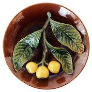 Antique Portuguese Palissy Ware Large Plate Bordallo Pinheiro, Caldas Portugal, Earthenware, Barbotine