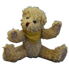 """Lovely bear  8.3 """""""