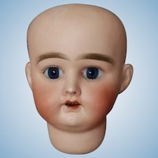 Small doll Head  MARKED  22  5x  DEP