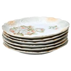 Set of Six Antique Porcelain Dessert Plates Made in Germany Circa 1890