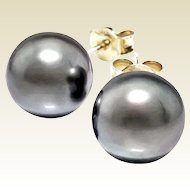 7.5 mm Silver Gray Cultured Pearl Earring Studs Goldplate Push Backs