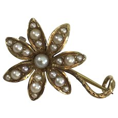 14K gold Victorian Flower Brooch with Seed Pearls