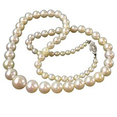 15 Inch Vintage Graduated Cultured Pearl Necklace with Gold Clasp