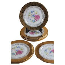 Set of 8 EDGEWOOD Iroquois China FLORAL Dinner Plates * Chargers