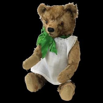 1930's Appealing Tipped Teddy Bear