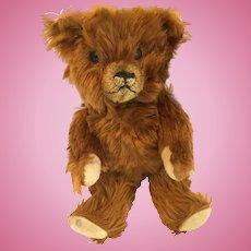 """12"""" Cinnamon American Bear"""
