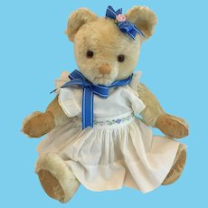 Beautiful Vintage English Teddy Bear