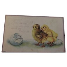 Circa 1917 Sweet Easter Chick Postcard