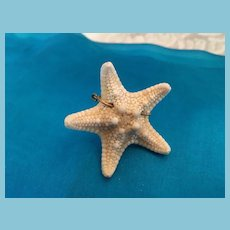 1960s Delicate Natural Starfish on a Twisted Wire Ring