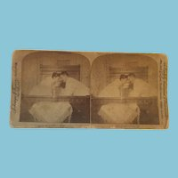 1894 Stereoscope Card Which Tells a Couple's Bed-time Story