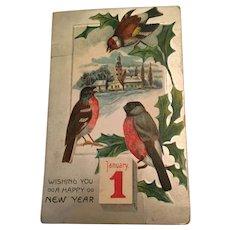 Century Old Embossed New Year Bird Winter Scene Postcard