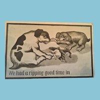 Circa 1920s signed L.G.W. Comic Unused Puppy Postcard