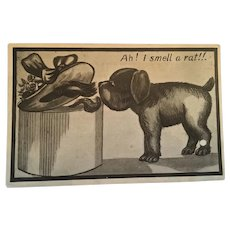 Circa 1920s Comic Puppy Unused Postcard