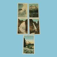 Five 1920s  Rainier National Park Unused Numbered Postcards - 2