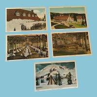 Five 1920s Paradise Inn Rainier National Park Unused Numbered Postcards - 3