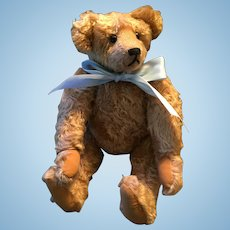 Artist Made Margarete's German Mohair Teddy Bear shown in the 'Complete Book of Teddy Bears'