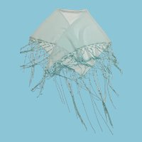 Pearl Embellished Triangle Shaped 'Pale Mint Green' Voile Shawl