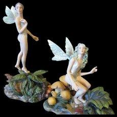 Stunning Fairies by James Christensen