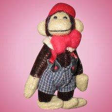 Heart warming miniature Monkey