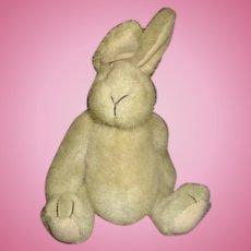 Sweet Bunny Rabbitnamed Muffy