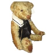 Adorable Teddy bear  with beautiful curly distressed mohair fully jointed
