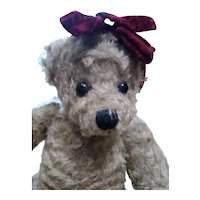 Adorable Teddy bear by Mary Holstad 1998