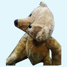 Adorable Antique Mohair Teddy bear